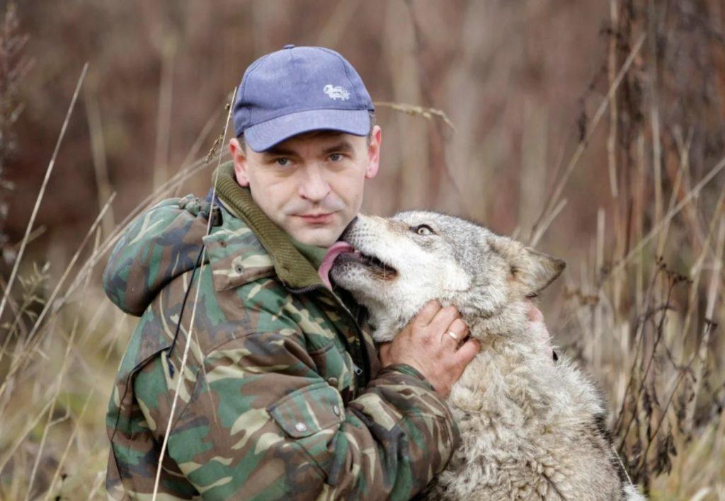 Волк спас жизнь лесника