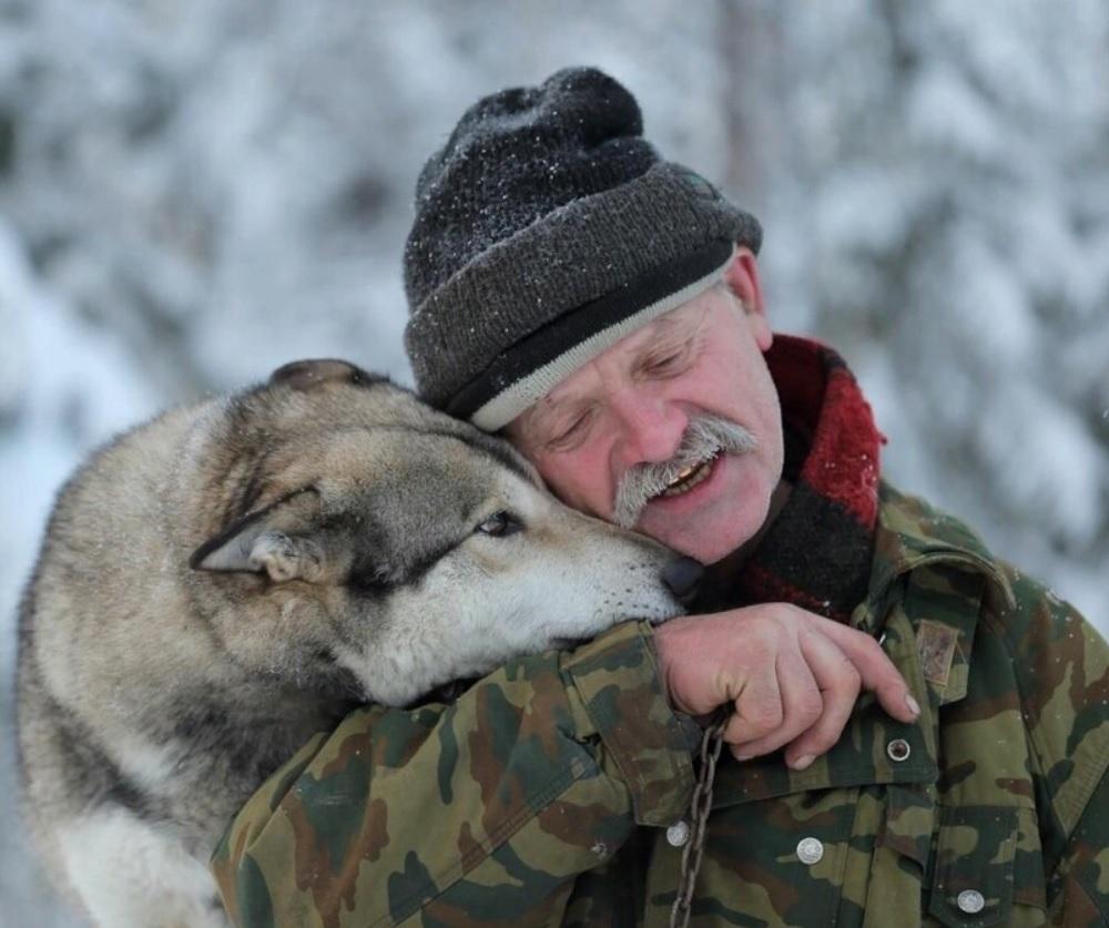 Лесник спас волчонка - а волчонок спас ему жизнь!