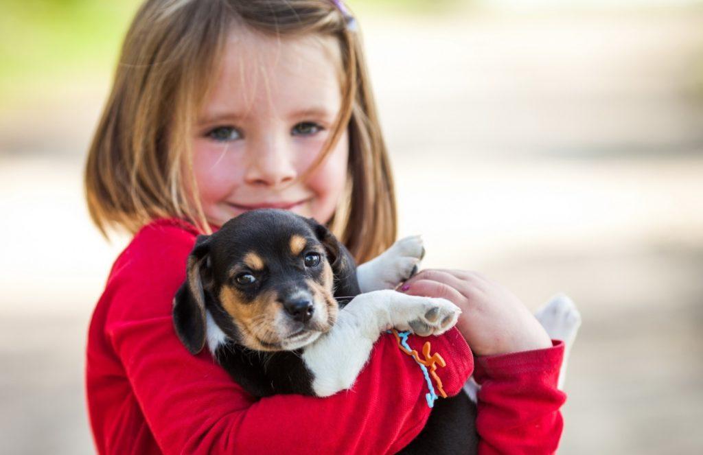 Спасенная собака - спасла жизнь ребенку!