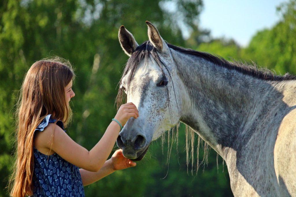Настоящая дружба доброй девочки и верной лошади - которая спасла ей жизнь!