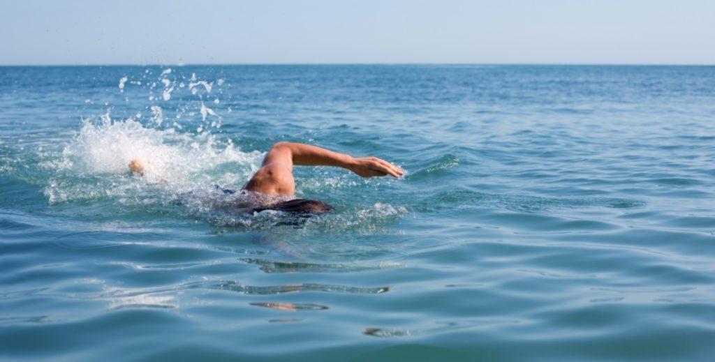 Тонущего в море пловца спасли дельфины