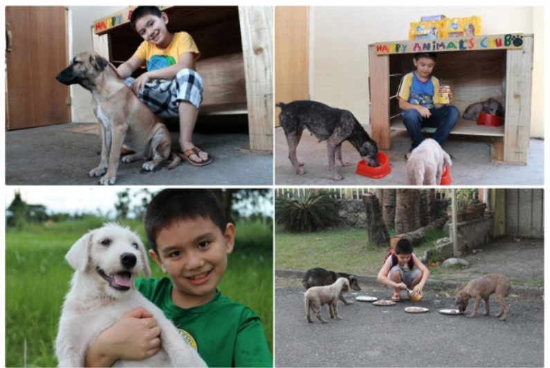 Мальчик выздоровел, благодаря общению со щенками