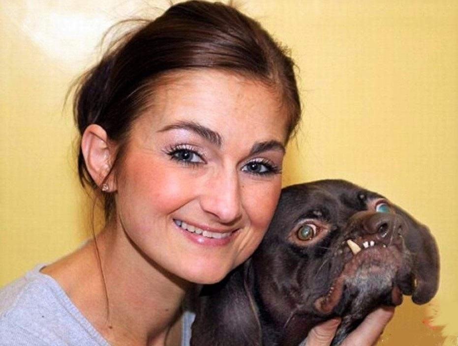 Девушка в приюте для животных выбрала травмированного и уродливого пса - которого никто не хотел забирать и все от него отказались