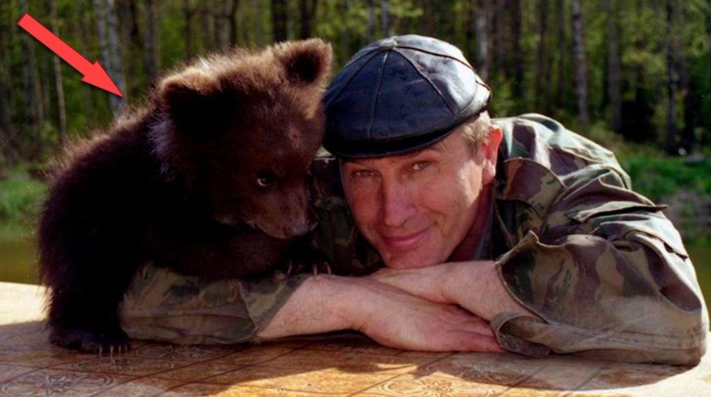 Забрав к себе травмированного медвежонка, мужчина спас его от гибели. Через год они опять встретились