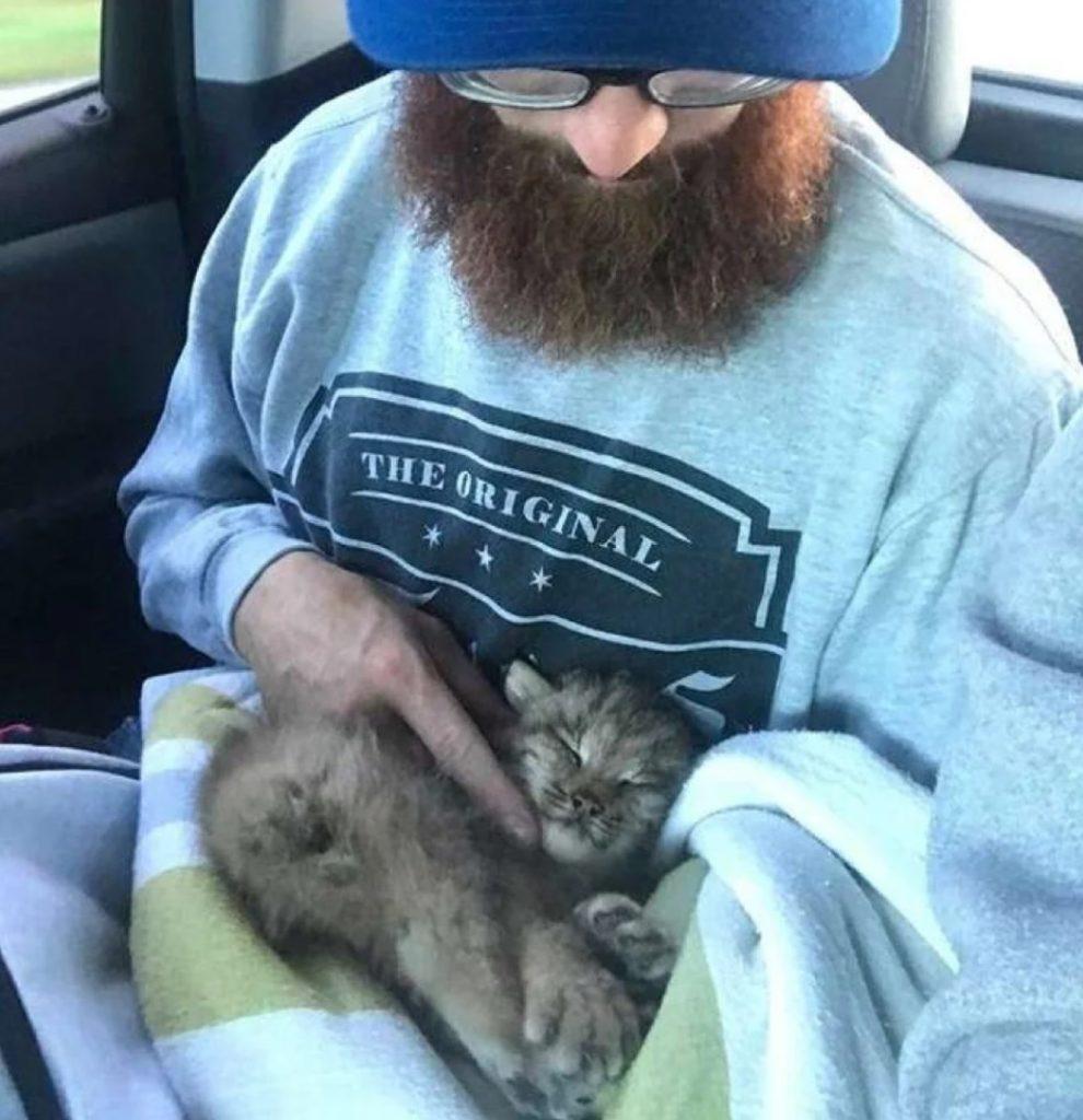 Котенок, которого взял к себе домой мужчина - оказался вовсе не котенок