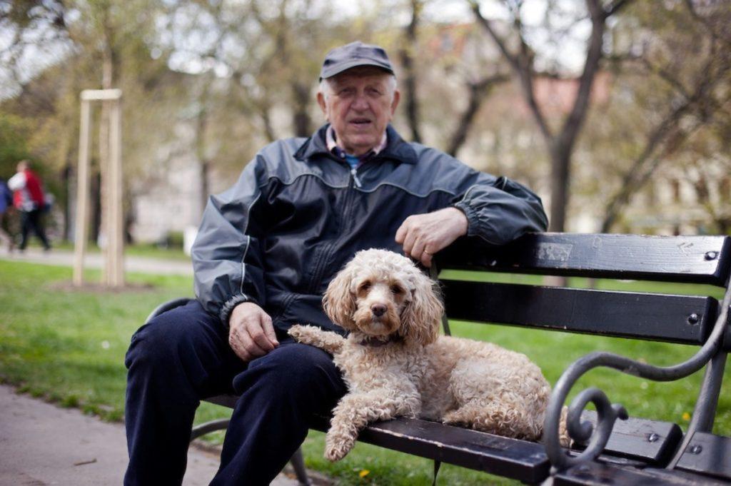 Спасенный мужчиной пес, стал для него верным другом и скрасил его одиночество
