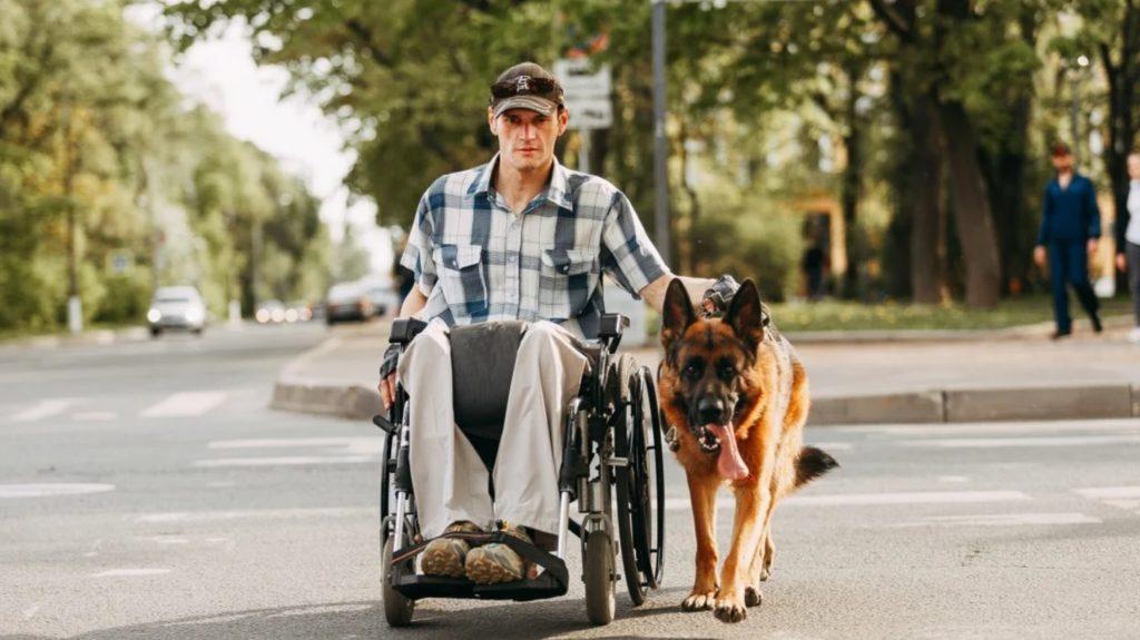 Овчарка помогла своему хозяину справиться с инвалидностью и стать здоровым