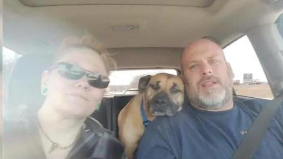 Пара оставила дверь автомобиля открытой, уличная собака запрыгнула в салон и осталась с ними