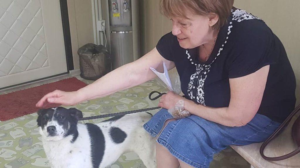 Пес, столкнувшись дважды с предательством, после проведенных пять лет в приюте, нашел дом и стал счастливым