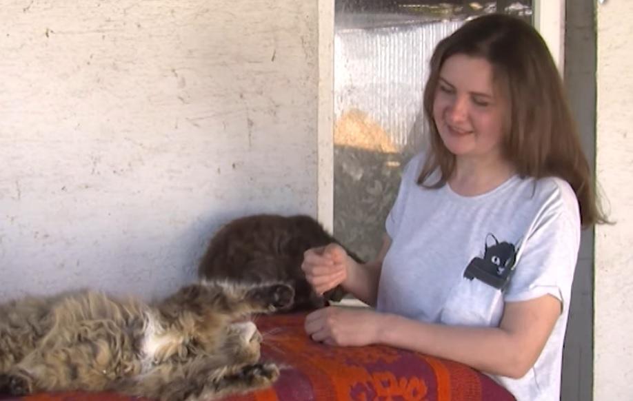 Жительница Александровки лечит бездомных животных и помогает им найти семью и дом