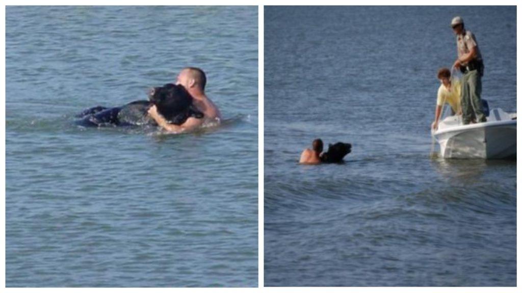 Огромный медведь тонул в озере, а мужчина отважился на героический поступок