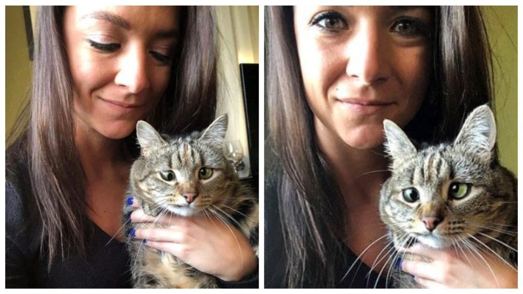 Косоглазый котенок, найденный в одиночестве и недоедающий, теперь наслаждается домом, полным любви