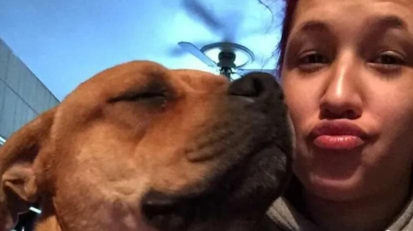 По трагической случайности, девушка потеряла своего любимого питомца, но через два года они снова вместе