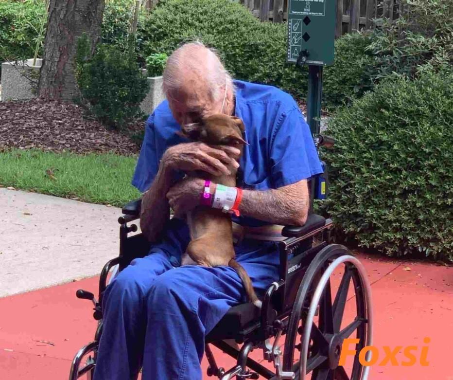После перенесенного инсульта хозяин встречается со щенком, который побежал звать на помощь